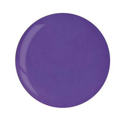 Afbeeldingen van Powder Bright Grape Purple 45 gram
