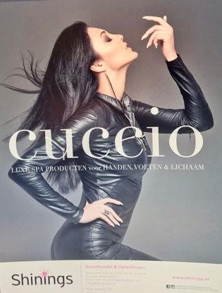 Afbeeldingen van Poster A2 formaat - Cuccio Pro Lady